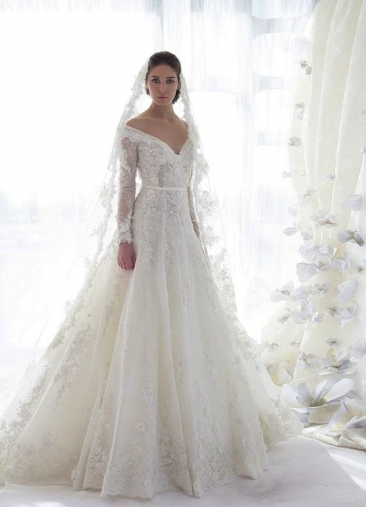 Lovely Lace Sleeve Wedding Dress fg8