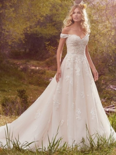 Elegant Lace Ball Gown Wedding Dress dt3