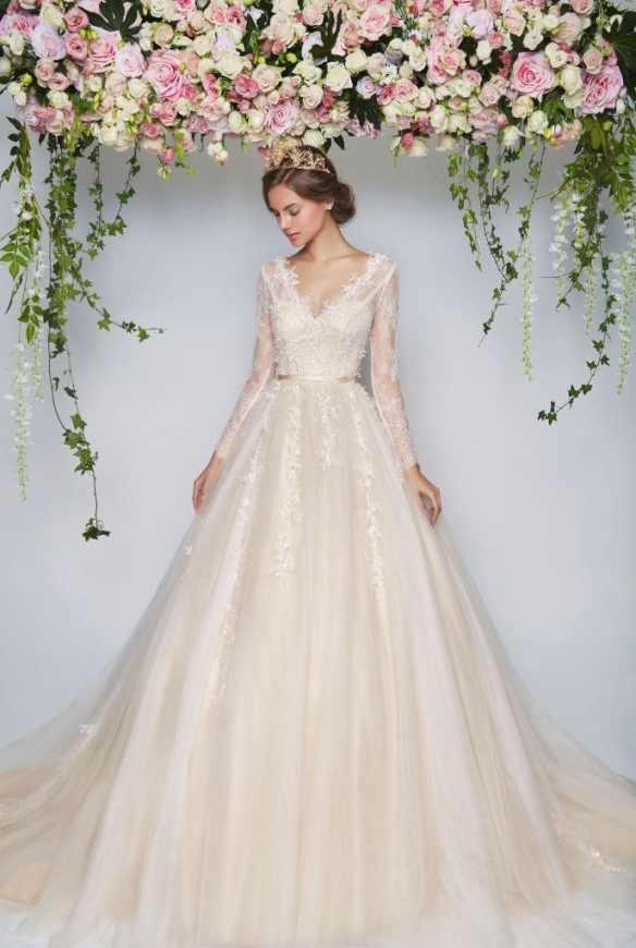Wedding Dresses Rental Wedding Dresses Rental Amusing Rent A Wedding Throughout Lovely Rental Wedding Dresses Ty4