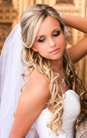 Explore Photos Of Wedding Hairstyles For Long Hair Half Up With Veil In Wedding Hair Half Up With Veil